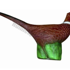 Eleven Target 3D Pheasant-0