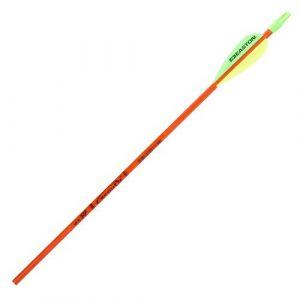 12 stk Easton arrows Scout 2 -0