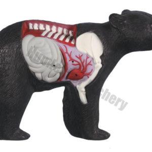 Rinehart Target 3D Anatomy Bear-0
