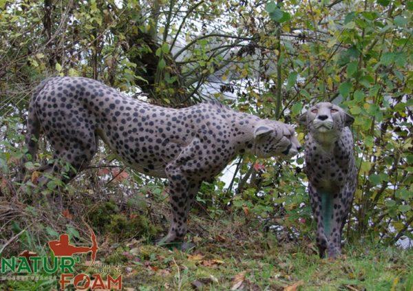Gepard-0