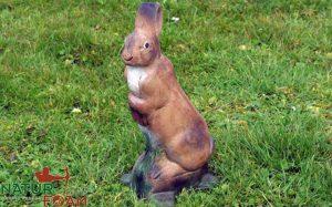 Stående kanin-0